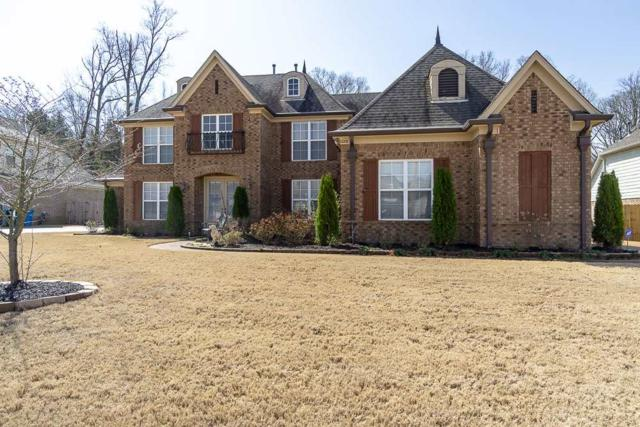 12273 Chapel Meadow Ln, Arlington, TN 38002 (#10048590) :: J Hunter Realty