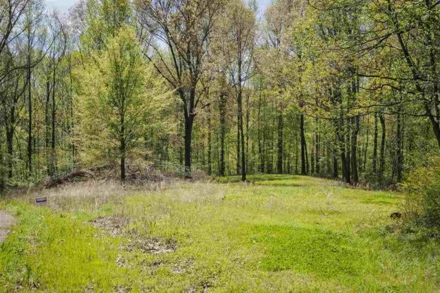 LOT 11 Oakwood Dr, Unincorporated, TN 38015 (#10049710) :: All Stars Realty