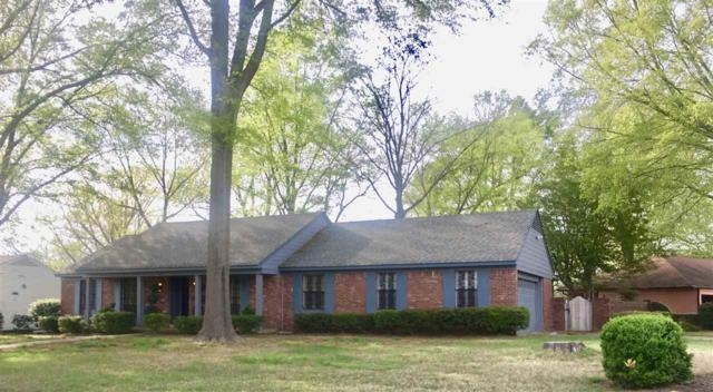 166 Horse Shoe Cv, Memphis, TN 38109 (#10050179) :: ReMax Experts