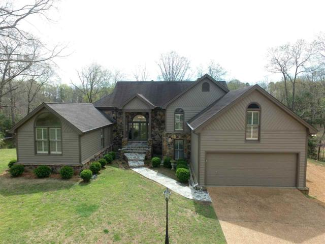 225 Shiloh Falls Ct, Counce, TN 38326 (#10050301) :: ReMax Experts