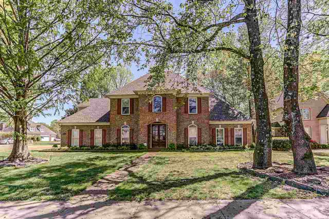 9873 S Houston Way, Collierville, TN 38139 (#10050651) :: RE/MAX Real Estate Experts
