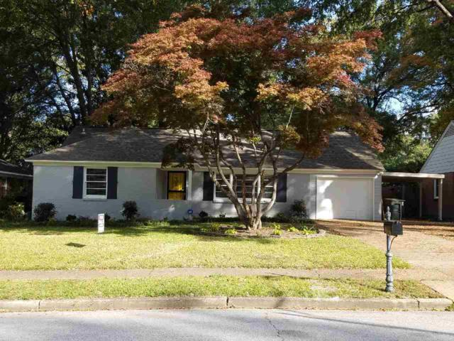 5362 Chickasaw Ave, Memphis, TN 38120 (#10051062) :: The Wallace Group - RE/MAX On Point