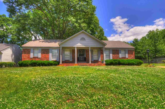 3118 Coleman Rd, Memphis, TN 38128 (#10052780) :: All Stars Realty