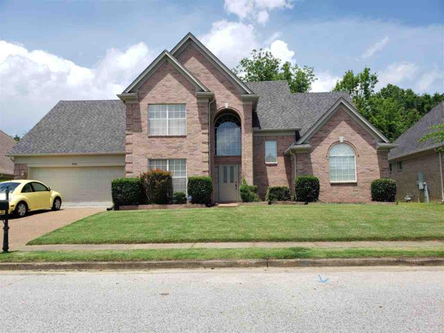 9568 Misty Knoll Dr, Memphis, TN 38016 (#10053191) :: The Dream Team