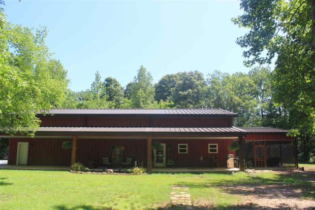10120 Green River Rd, Lake Cormorant, MS 38641 (#10053243) :: ReMax Experts