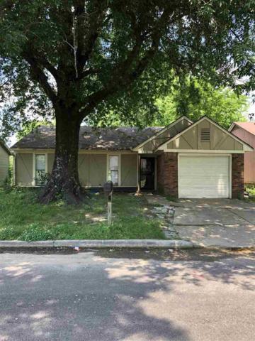 5596 Maple Tree Dr, Memphis, TN 38115 (#10054021) :: All Stars Realty