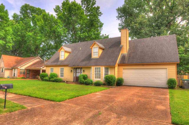 7165 Chevy Chase Dr, Memphis, TN 38125 (#10054355) :: All Stars Realty