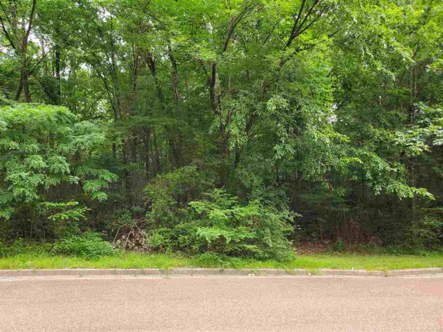 0 Norseman Dr E, Memphis, TN 38018 (#10054941) :: RE/MAX Real Estate Experts