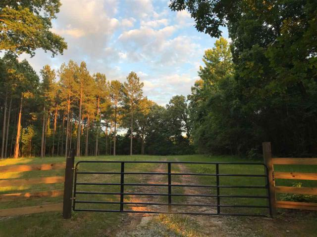 7720 76 Hwy, Unincorporated, TN 38068 (#10055077) :: All Stars Realty