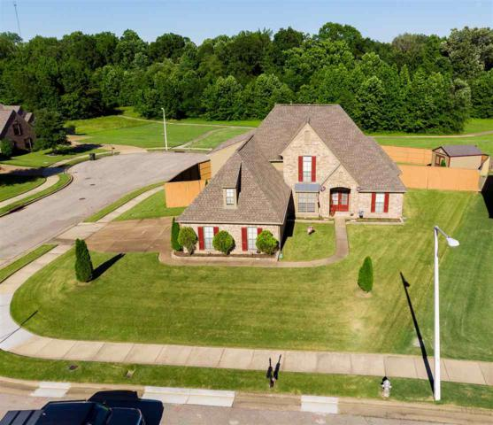 4916 Shadow View Ln, Bartlett, TN 38002 (#10055083) :: The Wallace Group - RE/MAX On Point