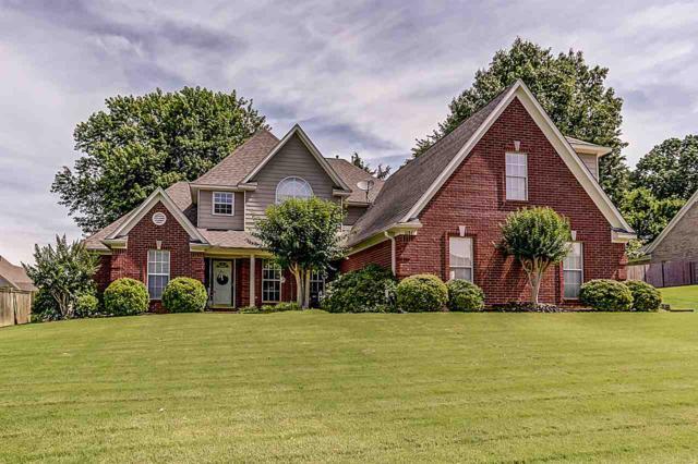 6184 Andrea Bluff Cv, Bartlett, TN 38135 (#10055201) :: RE/MAX Real Estate Experts