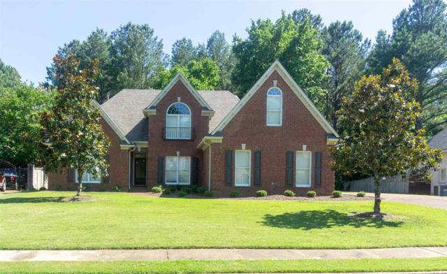 8765 River Hollow Dr, Memphis, TN 38016 (#10055695) :: Bryan Realty Group