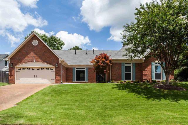 6492 Massey Pointe Cv, Memphis, TN 38120 (#10056078) :: All Stars Realty