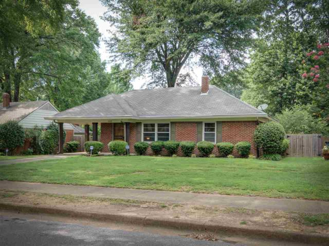 5036 Newcastle Rd, Memphis, TN 38117 (#10057177) :: Berkshire Hathaway HomeServices Taliesyn Realty