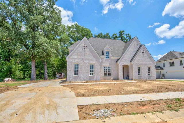 1562 Painted Horse Pass, Collierville, TN 38017 (#10057208) :: J Hunter Realty