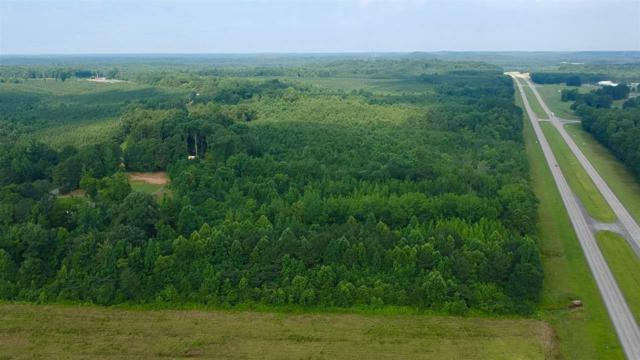 Mt. Gilead Road Rd, Iuka, MS 38852 (#10057376) :: Bryan Realty Group