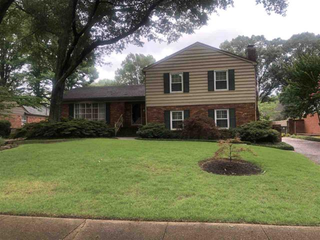 2404 Lovitt Dr, Memphis, TN 38119 (#10057466) :: ReMax Experts