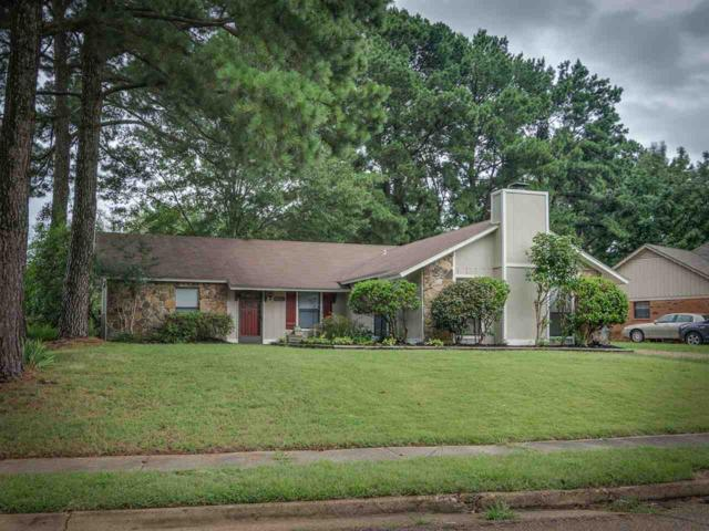 8201 Timber Hill Trl, Cordova, TN 38016 (#10057538) :: Bryan Realty Group