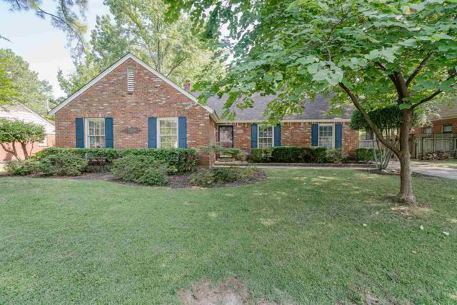 5172 Princeton Rd, Memphis, TN 38117 (#10057616) :: RE/MAX Real Estate Experts