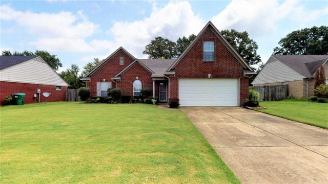 6574 White Hawk Ln, Olive Branch, MS 38654 (#10057623) :: All Stars Realty