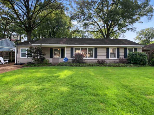 1256 W Perkins Rd, Memphis, TN 38117 (#10057660) :: All Stars Realty