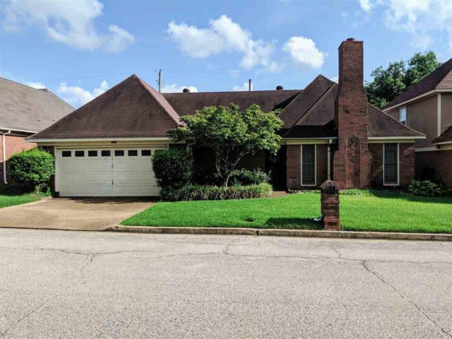 6759 Devenshire Ln, Memphis, TN 38141 (#10057671) :: Berkshire Hathaway HomeServices Taliesyn Realty