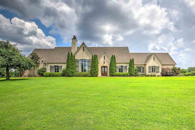 2043 Knox Rd, Rossville, TN 38066 (#10058593) :: Bryan Realty Group