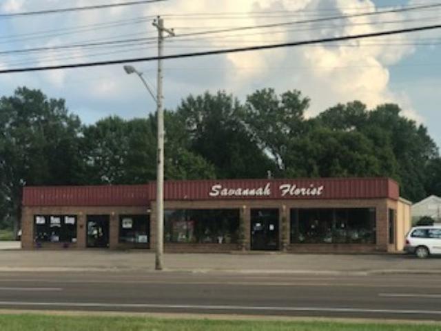 580 Wayne Rd, Savannah, TN 38372 (#10059288) :: All Stars Realty