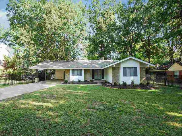 4726 Quintell Ave, Memphis, TN 38128 (#10061658) :: All Stars Realty