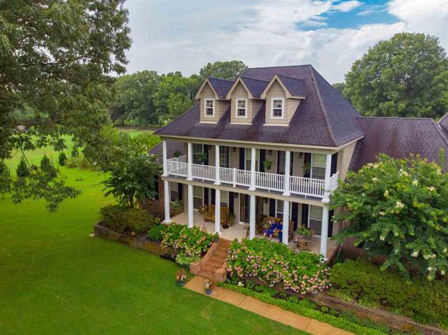 650 Canadaville Loop, Unincorporated, TN 38028 (#10061695) :: ReMax Experts