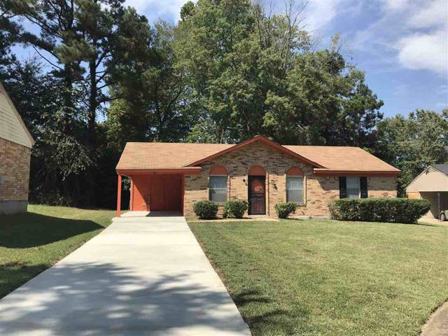 3416 Spring Water Cv, Memphis, TN 38128 (#10061933) :: The Dream Team
