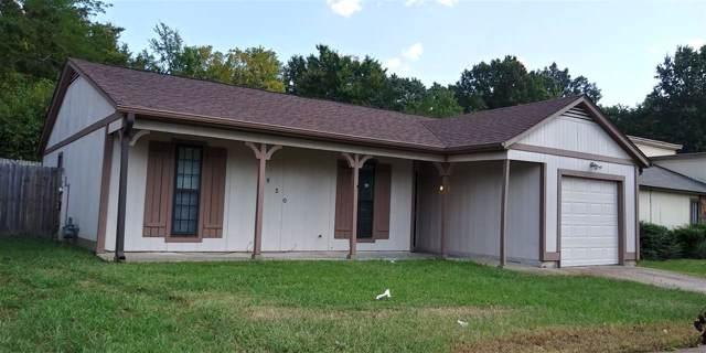 3850 Cedar Path Dr, Memphis, TN 38115 (#10062046) :: Berkshire Hathaway HomeServices Taliesyn Realty