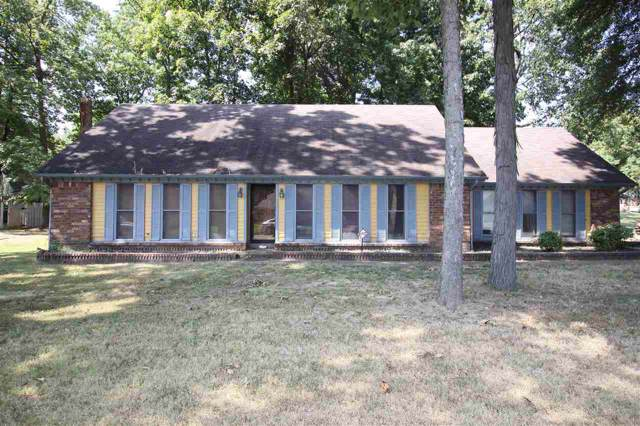 6670 Winding Birch Dr, Memphis, TN 38115 (#10062129) :: All Stars Realty