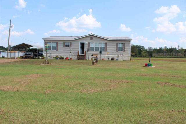 1845 Joe Dillon Rd, Michie, TN 38357 (#10062180) :: J Hunter Realty