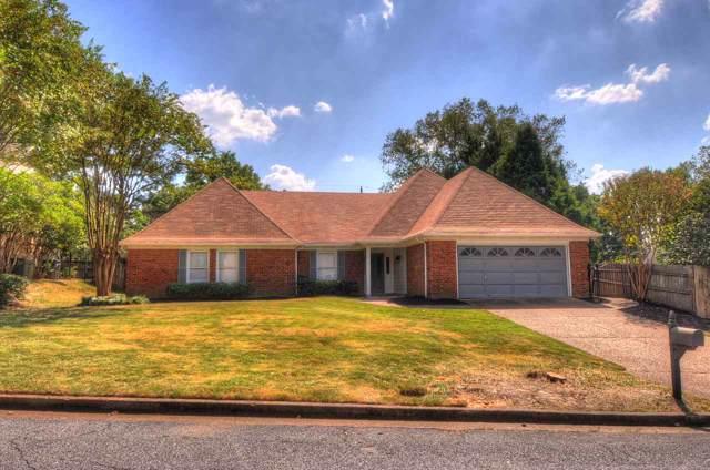 8239 Still Oaks Cv, Memphis, TN 38018 (#10062219) :: The Melissa Thompson Team
