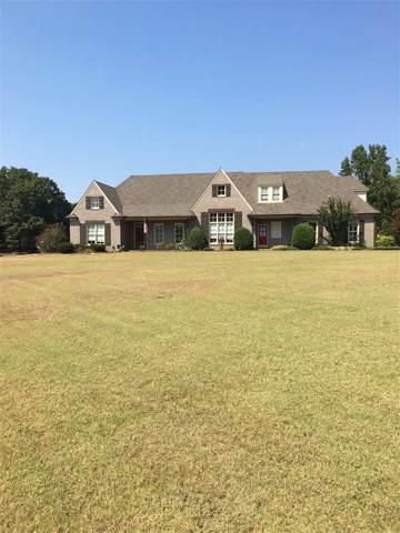 345 Alisha Dr, Unincorporated, TN 38066 (#10062298) :: J Hunter Realty