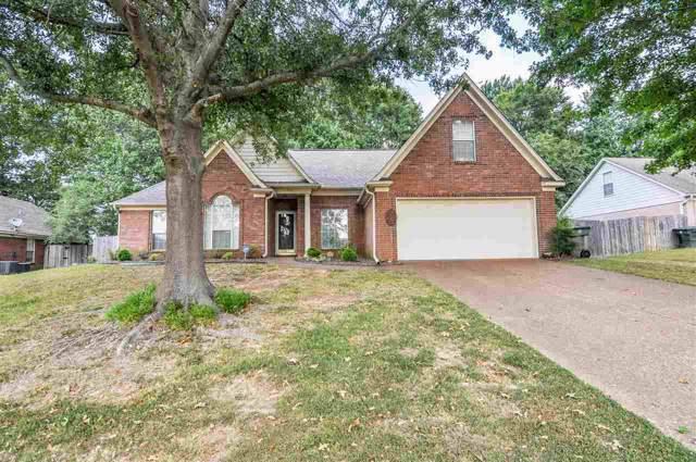 3918 Tamara Dr, Bartlett, TN 38135 (#10062358) :: The Wallace Group - RE/MAX On Point