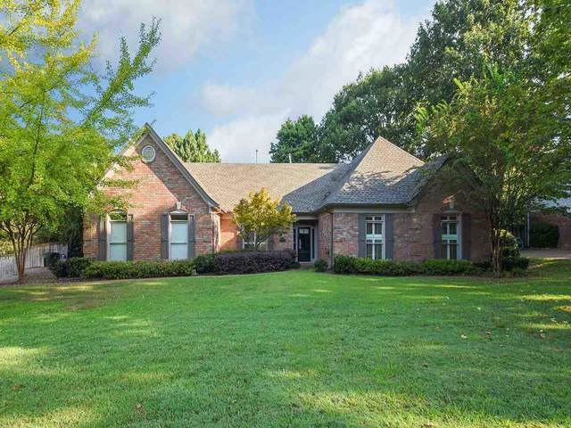 6800 Garden Oaks Dr, Memphis, TN 38120 (#10062390) :: The Wallace Group - RE/MAX On Point