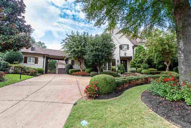 10024 Forest Oaks Cv, Collierville, TN 38017 (#10062729) :: RE/MAX Real Estate Experts