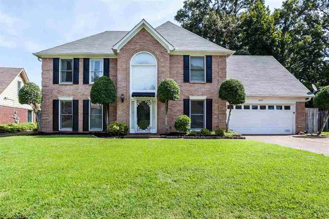 8894 Gooseberry Cv, Memphis, TN 38016 (#10062890) :: RE/MAX Real Estate Experts