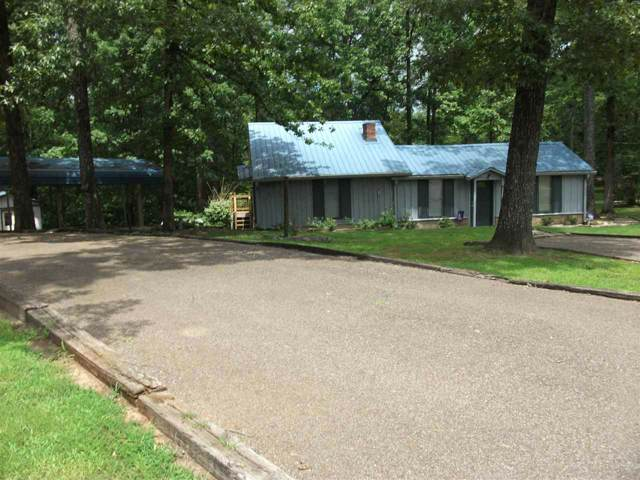 485 Muscatel Rd, Counce, TN 38326 (#10063064) :: Bryan Realty Group