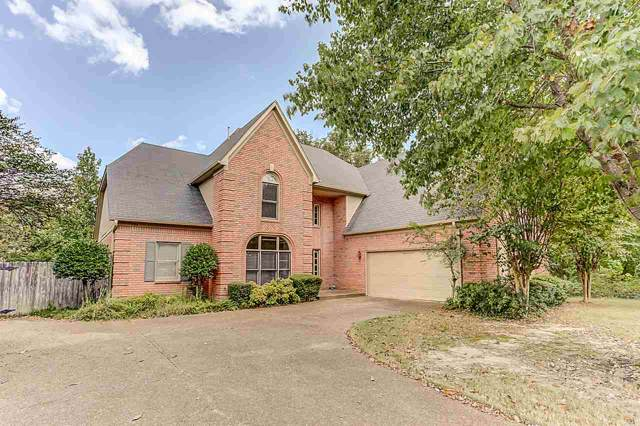 704 Shelton Rd, Collierville, TN 38017 (#10063132) :: RE/MAX Real Estate Experts
