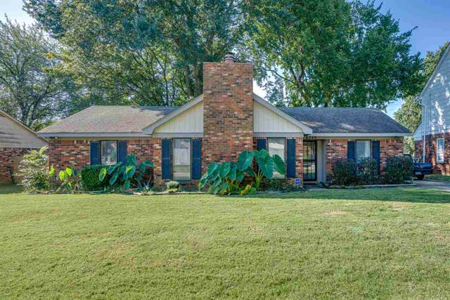 6249 Holly Park Dr, Memphis, TN 38141 (#10063272) :: The Melissa Thompson Team