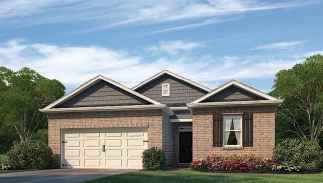5337 Crossfield Road Rd, Memphis, TN 38109 (#10063782) :: ReMax Experts