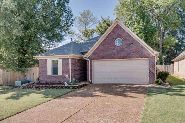 891 Timber Grove Dr, Memphis, TN 38018 (#10063864) :: RE/MAX Real Estate Experts