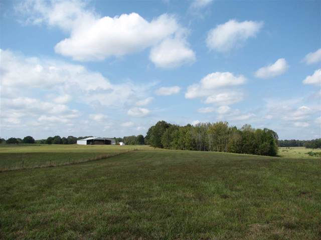 450 Hutton Rd, Sardis, TN 38371 (#10064077) :: The Wallace Group - RE/MAX On Point