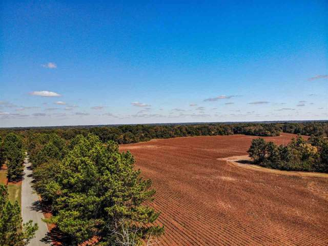 FARM 1 Solomon Mill Rd, Unincorporated, TN 38068 (#10064248) :: All Stars Realty
