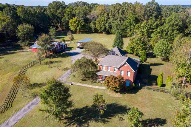 227 Levy Dr, Somerville, TN 38068 (#10064434) :: All Stars Realty