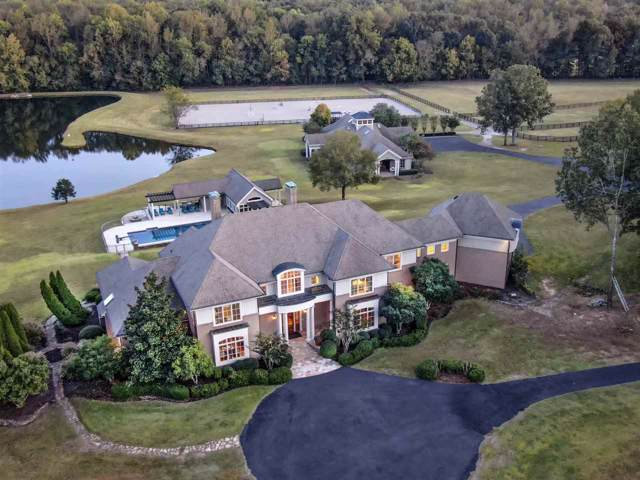 10645 Sparkle Creek Cir, Unincorporated, TN 38028 (#10064557) :: The Wallace Group - RE/MAX On Point