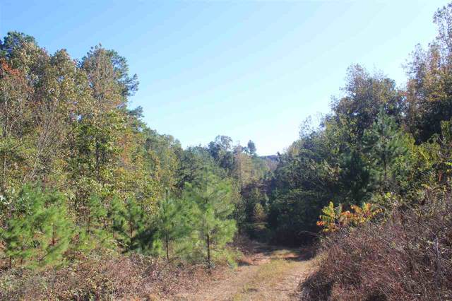 3835 Wilson Golden Rd, Waterford, MS 38685 (#10064682) :: ReMax Experts